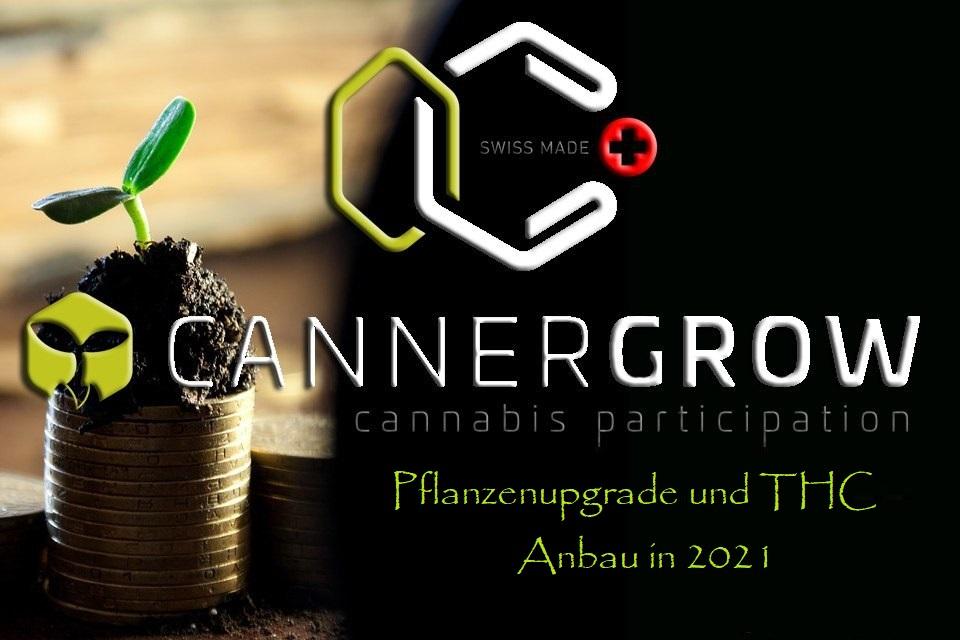 Cannergrow Pflanzenupgrade und THC Anbau